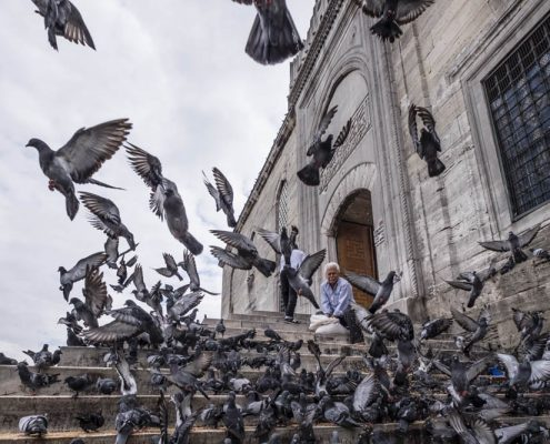 One of the classic scenes you can witness in Istanbul is locals feeding pigeons.